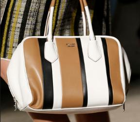 Fashionable Totes-Bag Fashionista